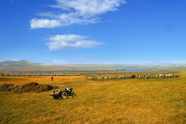 Landscape, Lawn, Outdoor, Sky, Nature, Hulunbeir