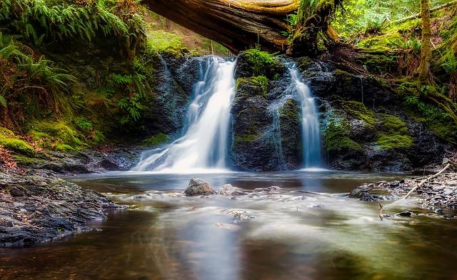 Waterfalls, Stream, Trees, Moss, Falls, Landscape