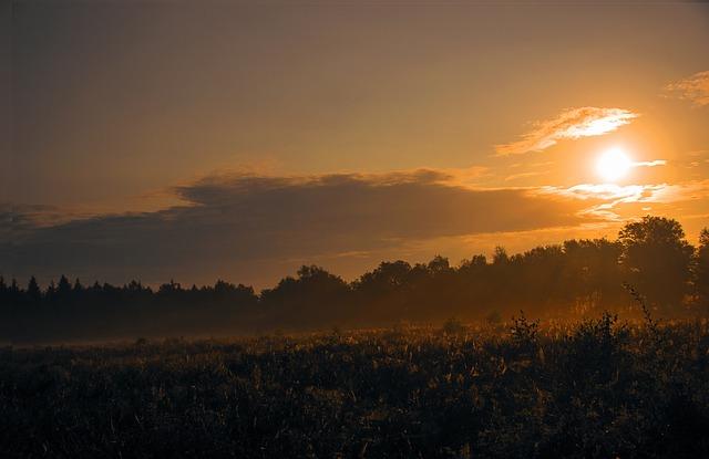 Sunrise, Landscape, Sun, Nature