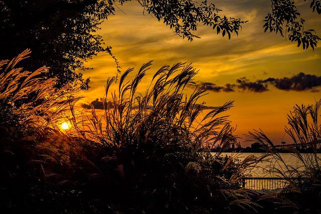 Sunset, Water, Orange, Summer, Sun, Sky, Landscape