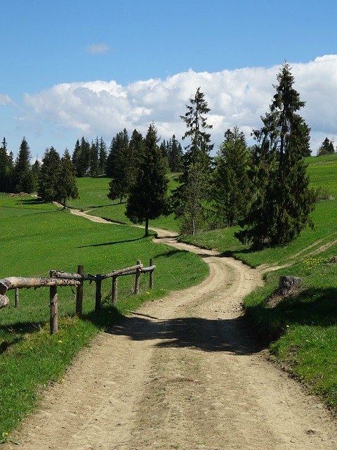 Tatra Bukovina, Poland, Tourism, Trail, Landscape