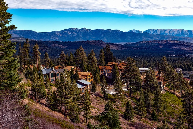 Mammoth Lakes, California, Landscape, Towns, Log Cabins
