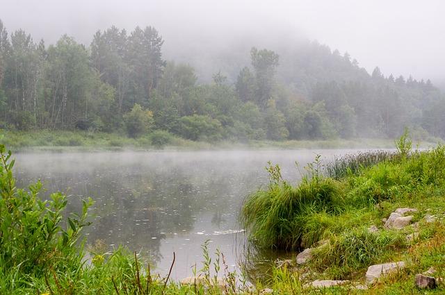 Water, Nature, Landscape, River, Lake, Travel, Fog
