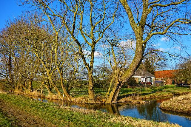 Creek, Water, Trees, Farmhouse, Landscape, Rural