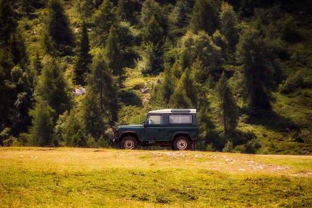 Landscape, Jeep, Truck, Vacation, Holiday, Nature