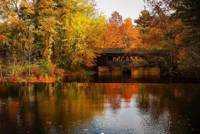 Massachusetts, Lake, Water, Reflections, Landscape