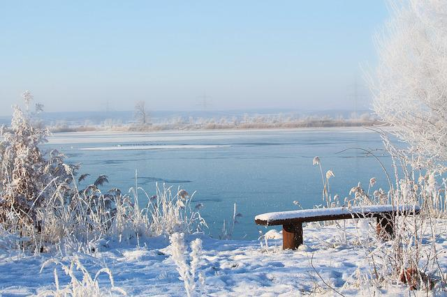 Landscape, Lake, Bank, Winter Impressions, Wintry, Snow