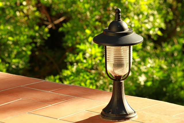 Lantern, Garden, Leaves