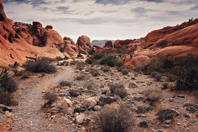 Red Rock Canyon, Las Vegas, Nevada, Desert, Nature