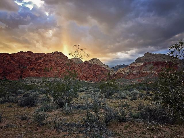 Road, Desert, Las Vegas, Red Rock, Red Rock Canyon