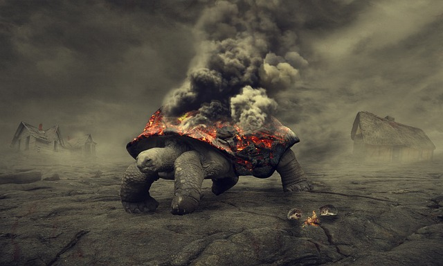 Turtle, Fire, Lava Flow, Lava, Smoke, Gray, Reptilian