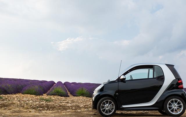 Lavender, Lavender Field, Car, Smart, France, Provence