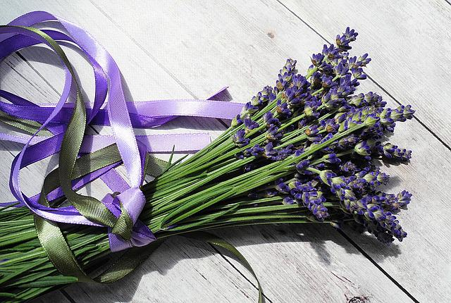 Lavender, Flower, Purple, Purple Flower