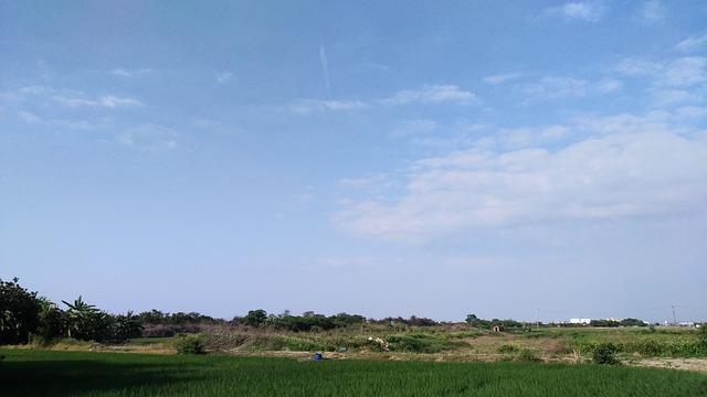 A Bird's Eye View, Nature, Sky, Outdoor, Lawn