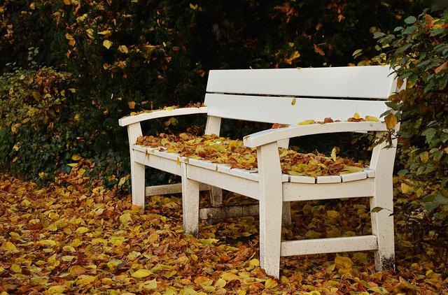 Park Bench, Autumn, Leaf Fall, Park, Fall Leaves