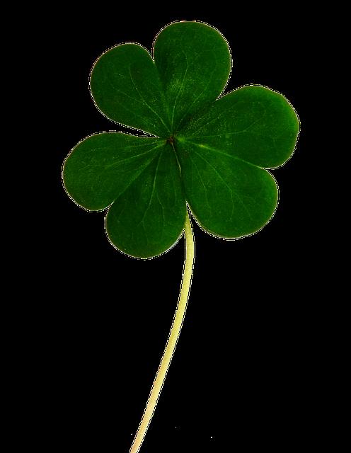 Clover, Shamrock, Irish, Luck, Leaf, Holiday, Ireland