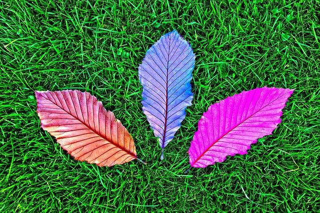 Leaf, Grass, Fallen Leaves, Vein, Texture, Pattern