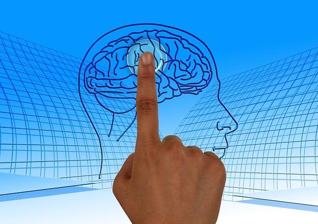Brain, Turn On, Education, Read, Book, School, Learn