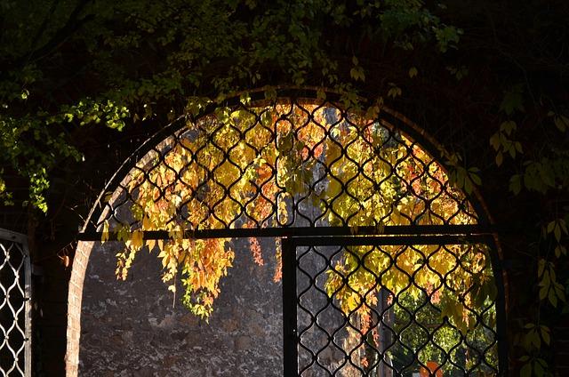 Archway, Autumn, Input, Door, Leaves, Portal