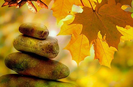 Meditation, Balance, Rest, Autumn, Tree, Trees, Leaves