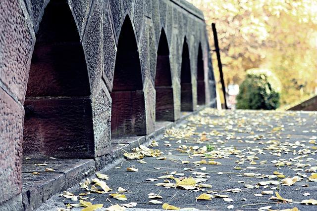 Bridge, Autumn, Leaves, Forest, Trueb, Mood, Water