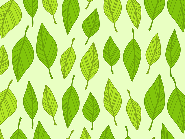 Autumn, Background, Boxes, Green, Leaf, Leaves, Pattern