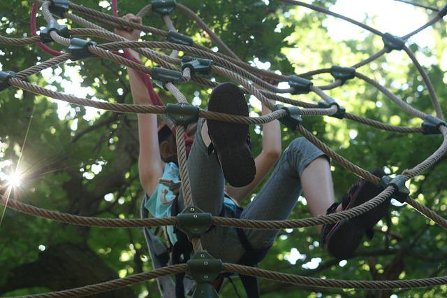 Climbing Forest, Network, Climb, Child, Leaves