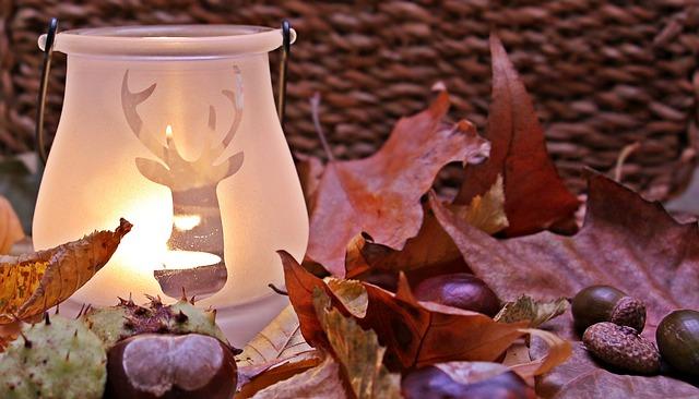 Autumn Mood, Autumn, Fall Leaves, Leaves, Color
