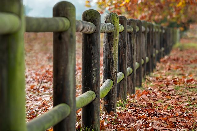 Fence Posts, Autumn, Leaves, Countryside, Scenery