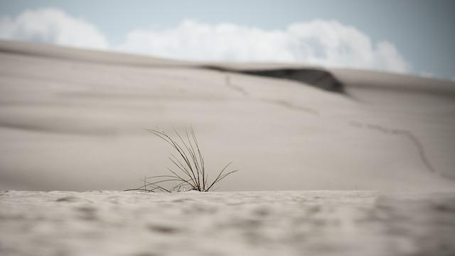 Dunes, Sand Dunes, Poland, Summer, Leba, Sand, Dry