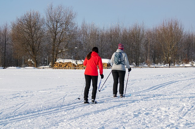 Winter, Sport, Cross Country Skiing, Leisure, Nature