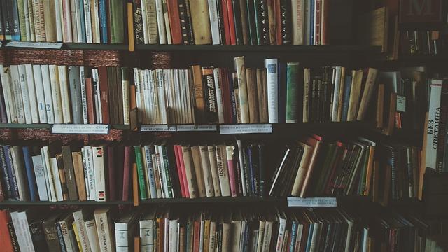 Bookcase, Books, Bookshelves, Knowledge, Library