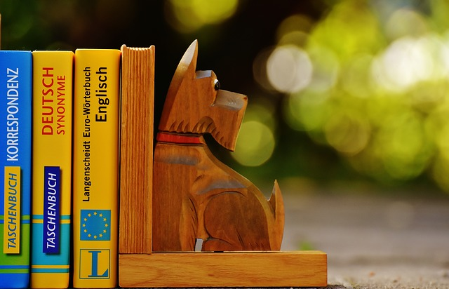 Bookends, Dog, Books, Read, Library, Information