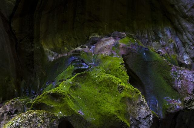 Roche, Lichen, Landscape
