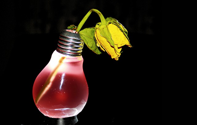 Electro Smoke, Rose, Withered, Pear, Light Bulb, Red