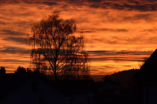 Autumn, Sunset, Golden Autumn, Atmospheric, Light