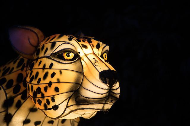 Jaguar, Light, Animal, Head, Muzzle, Leopard, Cheetah