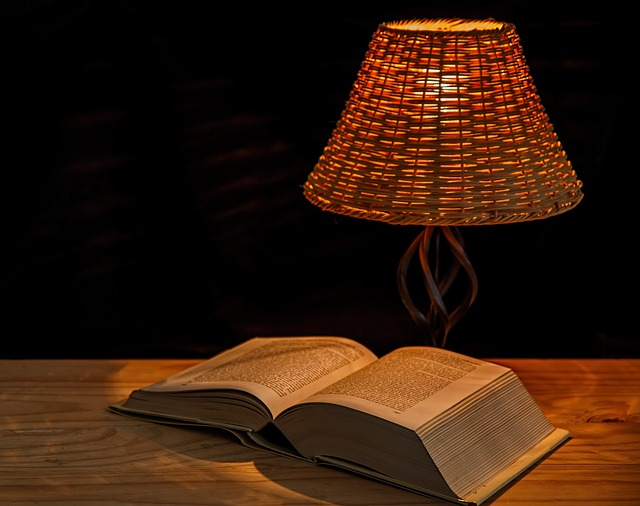 Light, Lamp, Bedside Lamp, Illumination, Lampshade