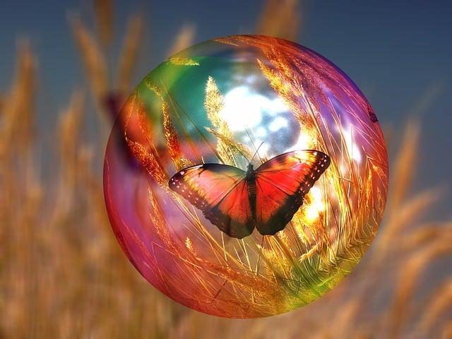 Soap Bubble, Butterfly, Cornfield, Light, Reflexes