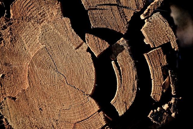 Log, Tribe, Wood, Like, Fragmented, Nature, Strains