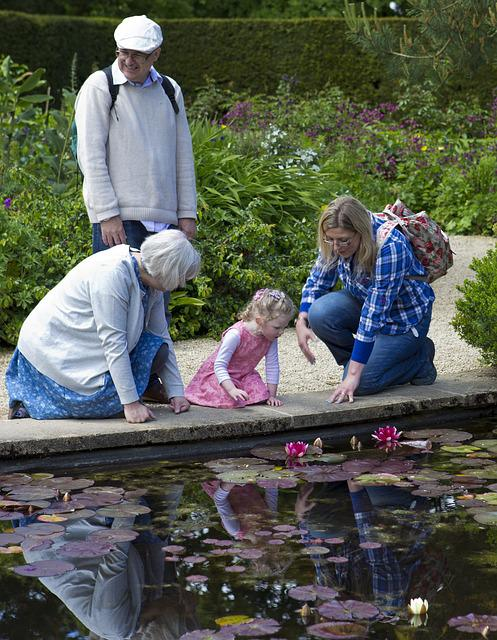 Lilly Pond, Little Girl In Pink Dress