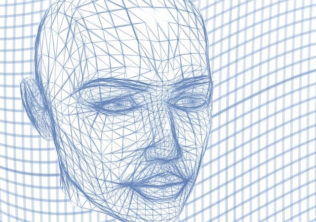 Head, Wireframe, Face, Lines, Web, Network