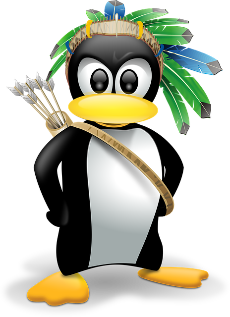 Penguin, Anthropomorphized, Animals, Linux