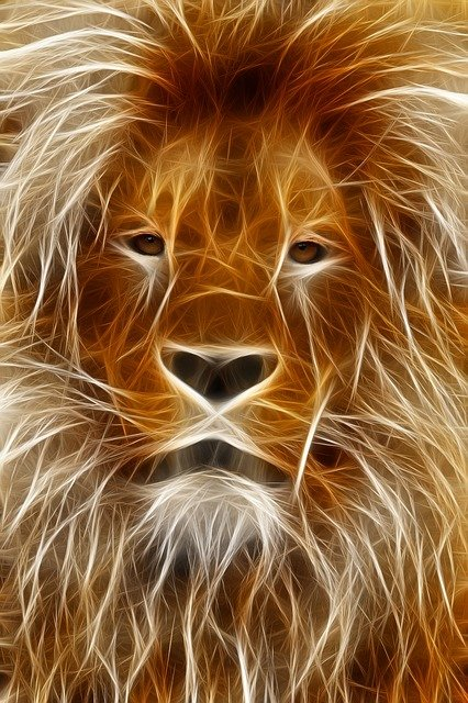 Lion, Image Editing, Graphic, Program, Photoshop
