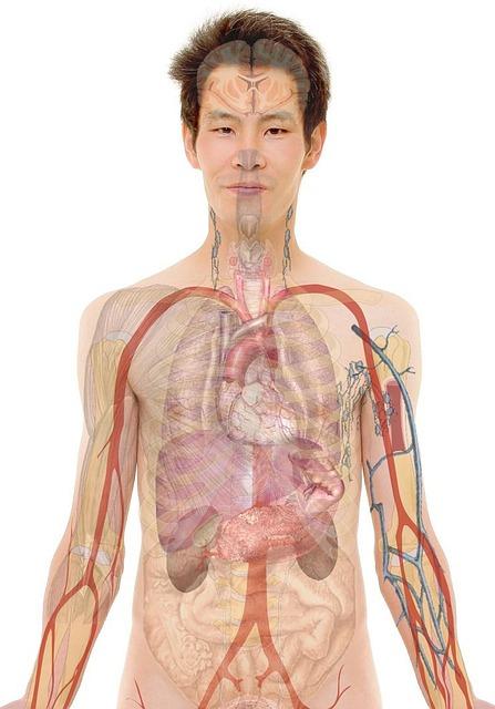 Anatomy, Man, Human, Face, Body, Lips, Mouth, Skin
