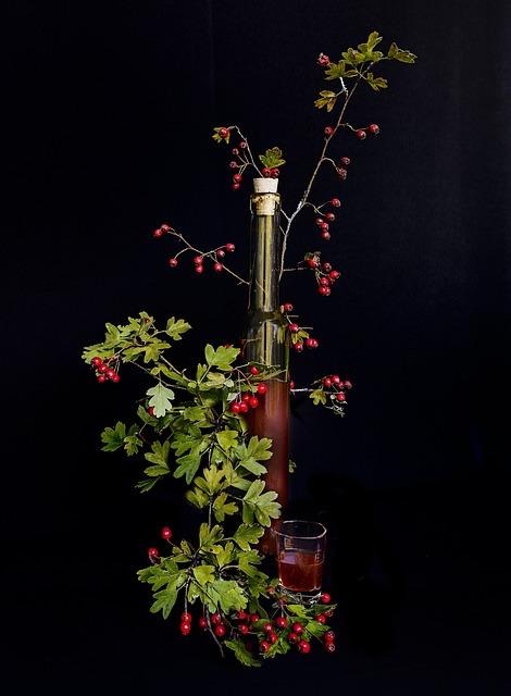 Hawthorn, Crataegus, Berries, Red, Liqueur, Still Lifes