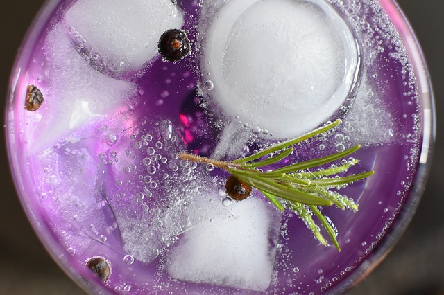 Gin Tonic, Alcohol, Glass, Drink, Relaxation, Liquor