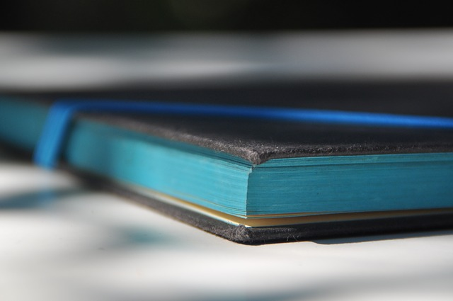 Book, Pages, Blue, Turquoise, Literature, Book Pages
