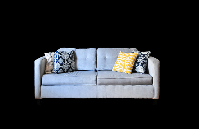 Couch, Sofa, Furniture Pieces, Living Room, Rest