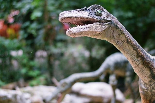 Dinosaur, Zoo, Velociraptor, Animal, Lizard, Bratislava
